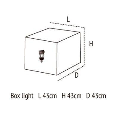 Medidas de box light